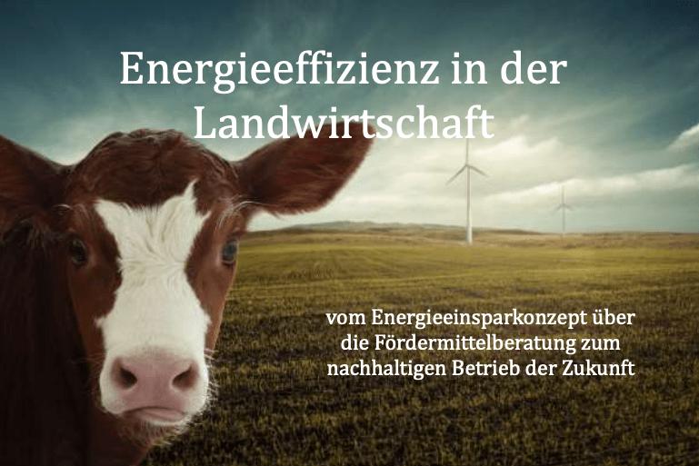 das Titelbild des Ratgebers für mehr Energieeffizienz in der Landwirtschaft