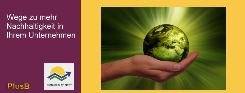 Grundbedürfnis Nachhaltigkeit - Wege zu mehr Nachhaltigkeit in Ihrem Unternehmen - PlusB Consulting Michael Wühle