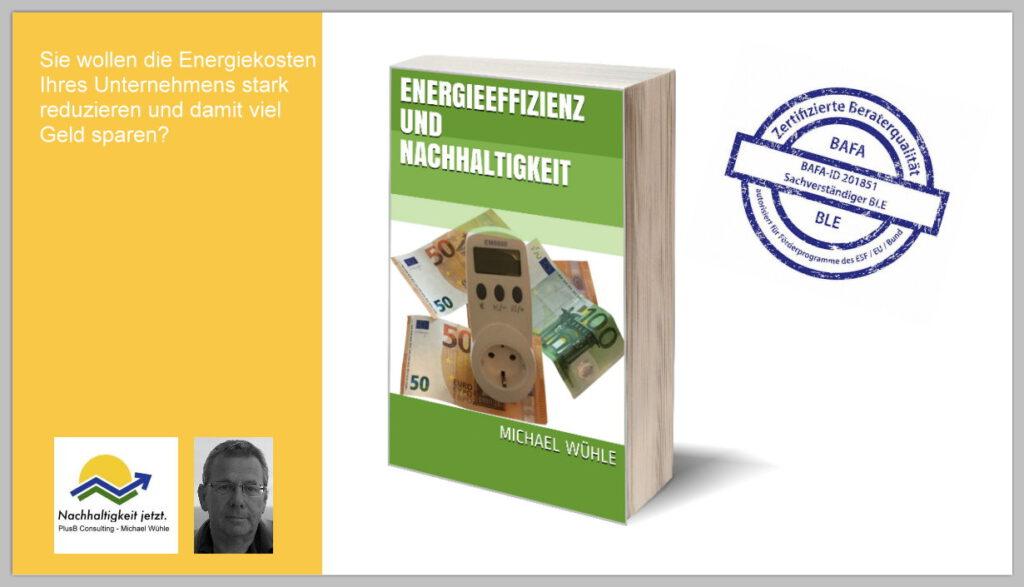 Das Bild zeigt das eBook 'Energieeffizienz und Nachhaltigkeit' von Michael Wühle, zertifizierter Energieberater von BAFA und BLE