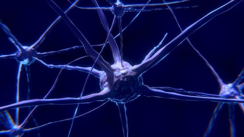 die Macht der Fragen - Visualisierung durch eine Nervenzelle