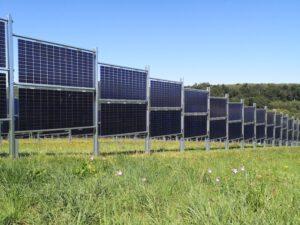 Photo eines Solarzaun: Blumenwiese vor den senkrecht aufgeständerten Photovoltaikmodulen